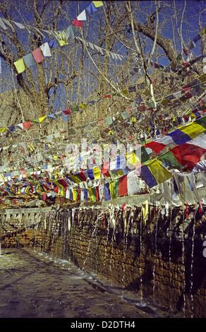 Prayer flags and fountains at Muktinath Vishnu Temple where bathing brings salvation to Hindus Annapurna circuit - Stock Image