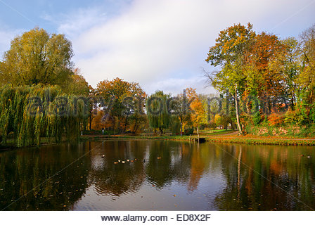 Autumn leaves float in the moat that surrounds Fürstenau castle in Lower Saxony, Germany. - Stock Image