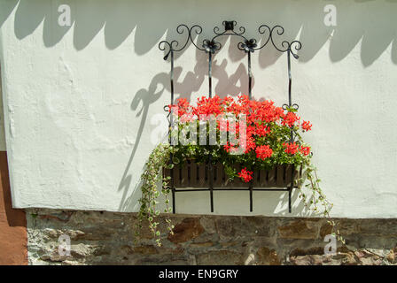 Side of a building with flowers - Stock Image