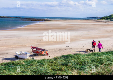 Walkers with dogs on the beach at Low Newton by the Sea, Northumberland, on a sunny but windy day during Storm Helene. 18th September, 2018. - Stock Image