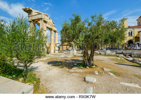 An olive tree grows near the ancient Gate of Athena Archegetis in the Roman Agora in Athens, Greece. - Stock Image
