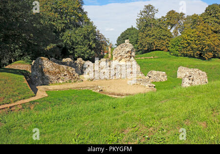 The ruins of a Norman Bishop's Chapel on the site of an Anglo-Saxon Cathedral at North Elmham, Norfolk, England, United Kingdom, Europe. - Stock Image