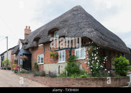 A traditional English thatched cottage - Stock Image