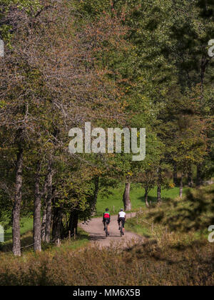 Two men riding racing bicycle on cycling tour in Middle Black Forest, Baden-Württemberg, Germany - Stock Image