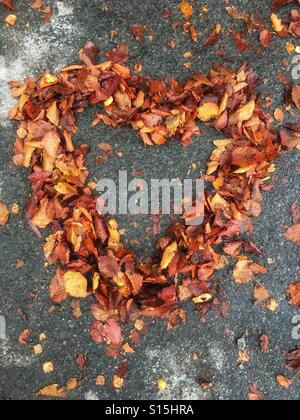 I love autumn - Stock Image