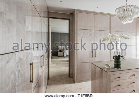 Gray modern dressing room with potted orchid - Stock Image