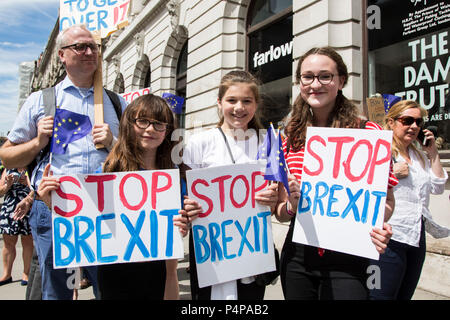 London, UK. 23 June 2018. Remain supporters and protesters gather in Pall Mall for an Anti-Brexit March and Rally to support a People's Vote. Photo: Bettina Strenske/Alamy Live News - Stock Image