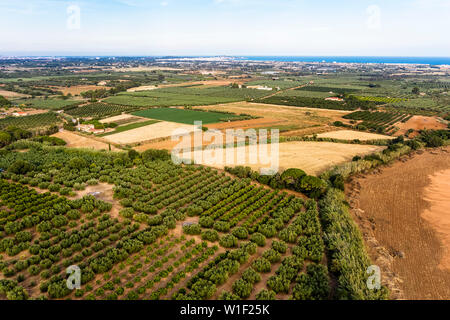top view of farm fields near of the Mediterranean sea in Tarragona, field background agricultural industry aerial view - Stock Image
