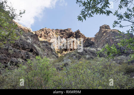 A view of vegetation and mountains from the Barranco del Infierno, Adeje, Tenerife, - Stock Image