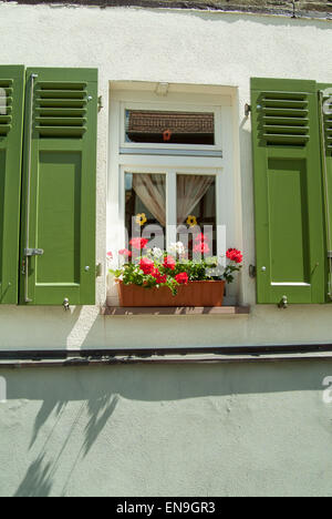 shutters and flower box in sunshine - Stock Image