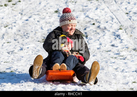 Chippenham, Wiltshire, UK. 2nd February, 2019. A parent and a child enjoying the snow before it thaws are pictured in a local park in Chippenham as they slide down a hill on a sledge. Credit: Lynchpics/Alamy Live News - Stock Image