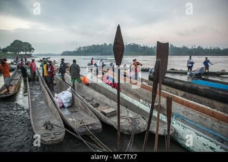 Dugout canoes and paddles at Pagwi, Middle Sepik, Papua New Guinea - Stock Image
