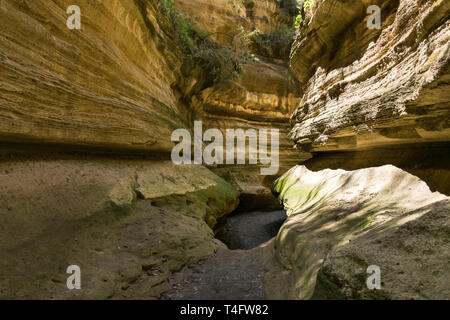 Dry river bed in the narrow section of Ol Njorowa gorge, Hells Gate National Park, Kenya - Stock Image