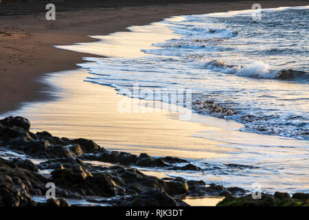 Golden dawn sunlight reflecting on the incoming tide along the shoreline of Playa de Tejita beach on the east coast of Tenerife, Canary Islands, Spain - Stock Image