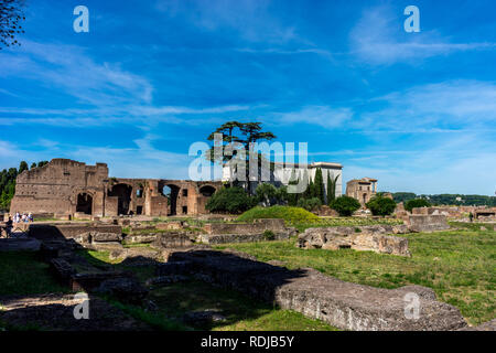 Rome, Italy - 24 June 2018: The ancient ruins at the Roman Forum in Rome. Famous world landmark - Stock Image