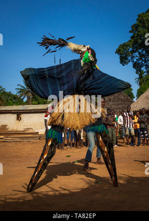 The tall mask dance with stilts called Kwuya Gblen-Gbe in the Dan tribe during a ceremony, Bafing, Gboni, Ivory Coast - Stock Image