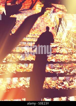 Fall day - Stock Image