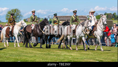 East Lothian, UK. 12th May, 2019. Wartime Experience: A family day out with all things related to the World Wars including equestrian performance by Les Amis D''Onno, an infantry display by Gordon Highlanders and display by Scots in the Great War group about military ordnance and firearms. British amd German camps and equipment as well as American army vehicle sales also on display. Credit: Sally Anderson/Alamy Live News - Stock Image