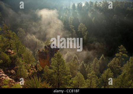 Walnut Canyon on misty summer morning after monsoon rains at night, Coconino National Forest, Flagstaff, Arizona, - Stock Image