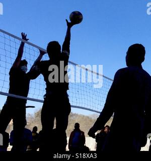 Volley ball jumpers - Stock Image