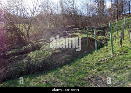 A landslide endangering the vineyard. Village near Lasko, Slovenia. - Stock Image