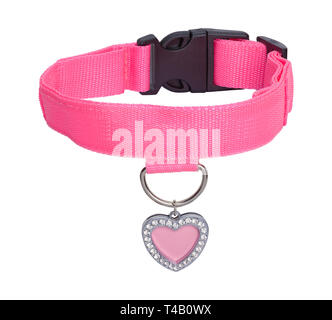 Pink Heart Dog Tag with Leather Collar Isolated on White Background. - Stock Image