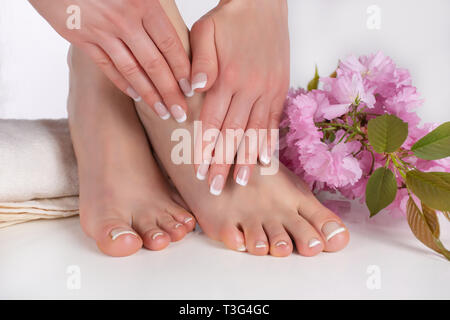 Beautiful female bare feet and hands with french manicure and pedicure on white towel in studio and pink decorative flower in background. Nails polish - Stock Image