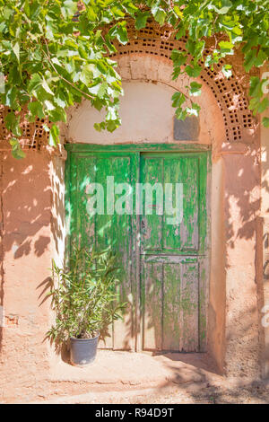 ancient wooden green door of house built with bricks and adobe, with plants, in old town of Ayllon village, Segovia, Spain, Europe - Stock Image