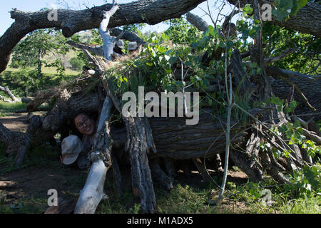 Oakland Military Institute cadets learning survival skills in Williams, California, 15-17 April 2016. (U.S. Air - Stock Image