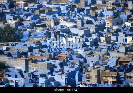 Blue Painted Houses Jodhpur, Rajasthan, India - Stock Image