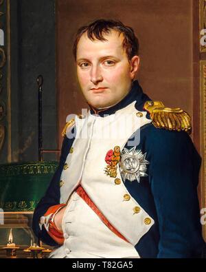 Napoleon Bonaparte Portrait (detail) by Jacques-Louis David, 1812 - Stock Image