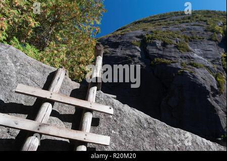 Wooden ladder on Avalanche Pass Trail, Adirondacks region, New York State, USA. - Stock Image