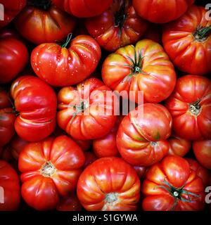 Fresh tomatoes for sale a fresh food market - Stock Image