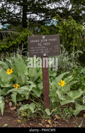 Grand View Point Sign at Trail Junction in Tetons Wilderness - Stock Image
