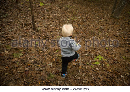 A young boy runs freely into the woods while camping with his family. - Stock Image