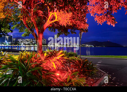View of the city of Cairns illuminated at night, Far North Queensland, FNQ, QLD, Australia - Stock Image