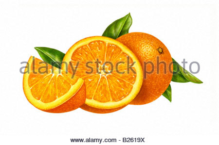 Orange with Half and Wedge - Stock Image