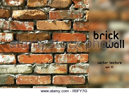 Brick wall. Vector background - Stock Image