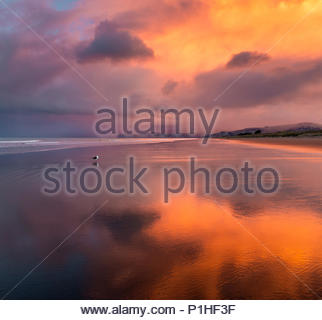 Winter sunset in Canterbury, new Zealand - Stock Image