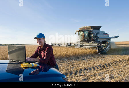 a farm girl uses a laptop computer as a combine harvester work a field during the soybean harvest, near Lorette, Manitoba - Stock Image