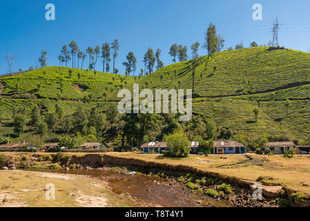 Horizontal view of a row of hillside cottages infront of a river in Munnar, India. - Stock Image