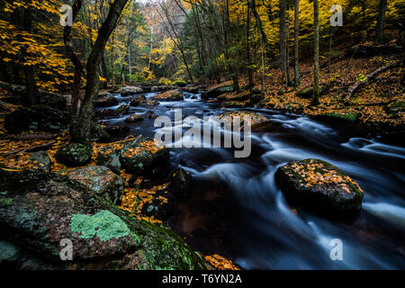 Cotton Hollow stream during autumn in Connecticut - Stock Image