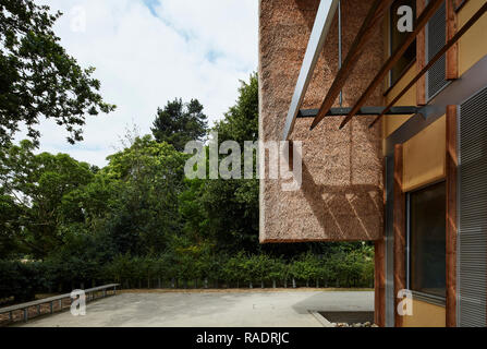 Thatch wall detaill at rear entrance. The Enterprise Centre UEA, Norwich, United Kingdom. Architect: Architype Limited, 2015. - Stock Image