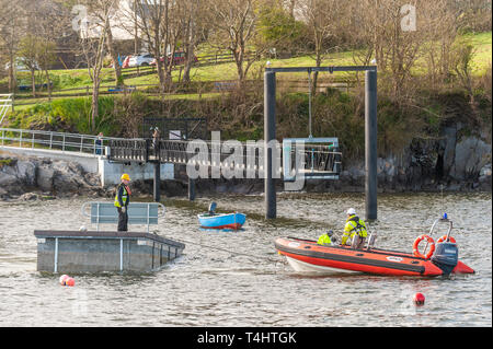 Schull, West Cork, Ireland. 16th Apr, 2019. West Cork Civil Engineering were given the task of refloating the €600,000 Schull pontoon, ready for the season.  Workers are seen floating a piece of the pontoon into position. Credit: Andy Gibson/Alamy Live News. - Stock Image