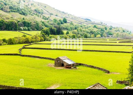 The Yorkshire Dales, Yorkshire Dales, farm, farms, Yorkshire dales farmland,  Yorkshire dales landscape,  Yorkshire dales vista, spring, UK, England - Stock Image