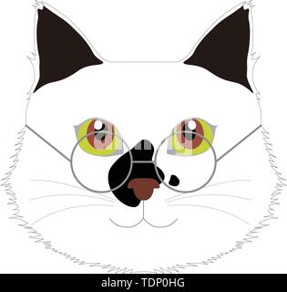 cat with glasses, computer graphics, cg, vector, vectors - Stock Image