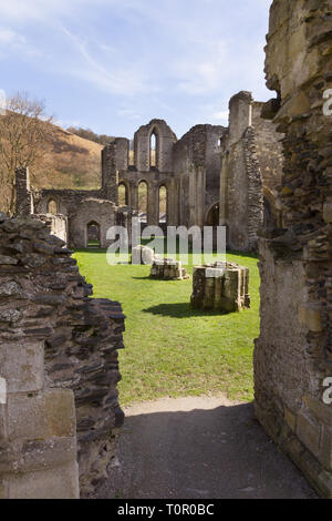 The ruins of Valle Crucis Abbey showing the nave. Founded as a Cistercian monastery in 1201 and closed in 1537 - Stock Image