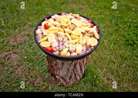 Traditional croatian meat and vegetables dish peka, food of Croatia - Stock Image