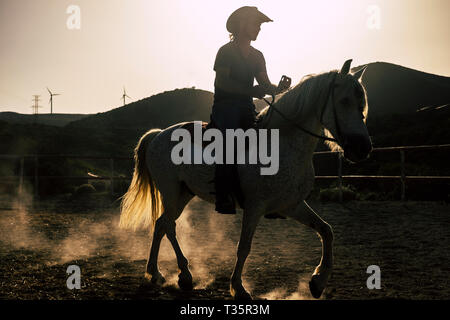 Young man feel the freedom riding a white horse in the sunset in sunlight - people and animals together in friendship - scenery landscape of cowboy fa - Stock Image