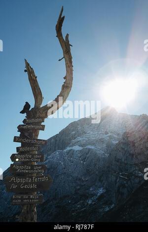 Wegweiser auf Bergstation Alpspitze - Stock Image